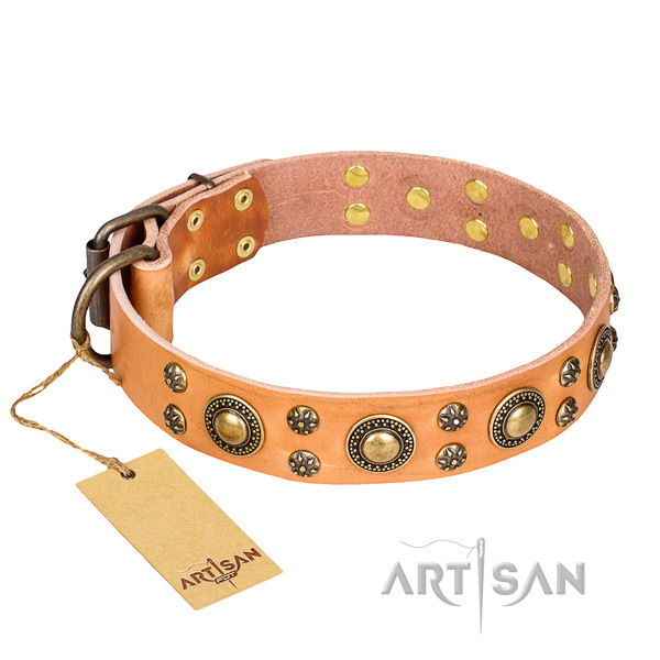 Daily leather collar for your gorgeous dog