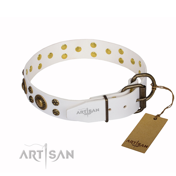 Dependable leather dog collar with sturdy elements