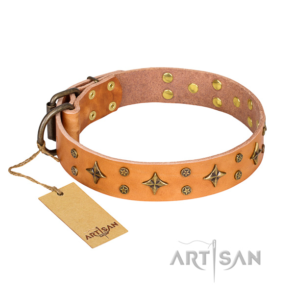 Tough leather dog collar with riveted fittings