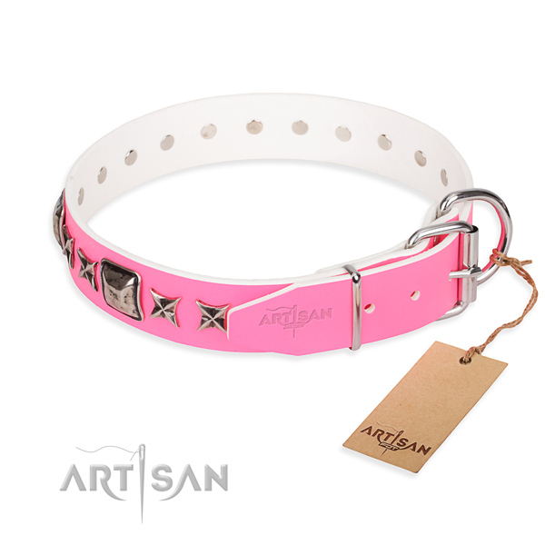 Hardwearing leather dog collar with sturdy elements