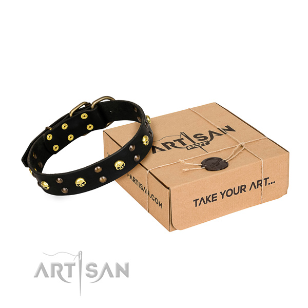 Day-to-day leather dog collar with extraordinary studs