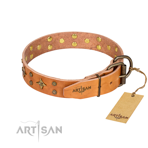 Practical leather collar for your darling four-legged friend