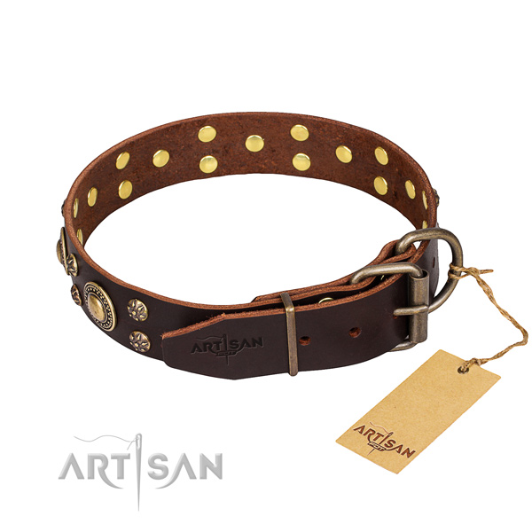 Functional leather collar for your stunning canine