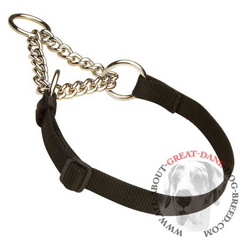 Martingale Great Dane collar for any weather