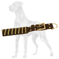 Adjustable Leather Great Dane Collar