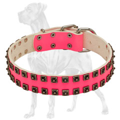 Pink Leather Dog Collar with Rivets