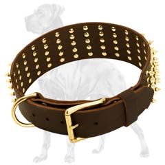 Riveted Leather Great Dane Collar with Spikes