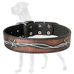 Durable Painted Leather Dog Collar