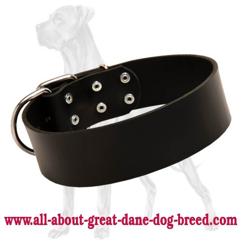 Classic Design Leather Dog Collar