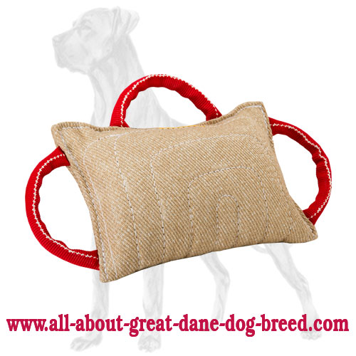 Jute Dog Bite Pad