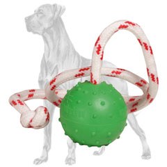 Floating Great Dane ball for water training and  playing