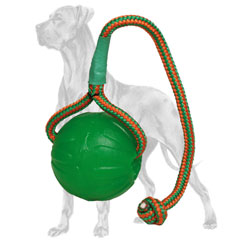Swinging rubber Great Dane ball on a nylon string