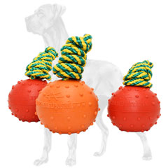 Rubber ball for Great Dane with colorful nylon rope