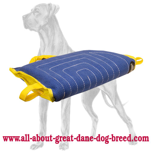 Bite and protection training sleeve for Great Dane