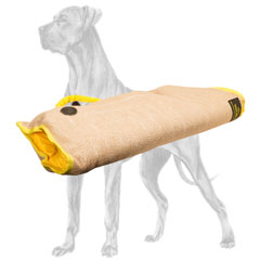 Professional Great Dane bite sleeve for safe puppy training