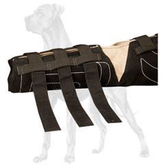 Great Dane bite sleeve with velcro straps for better  regulation