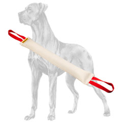 Fire hose Great Dane bite tug with 2 handles