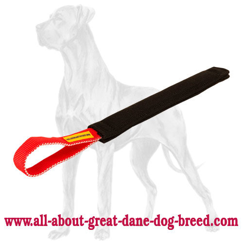 Superior Great Dane bite tug for puppy training
