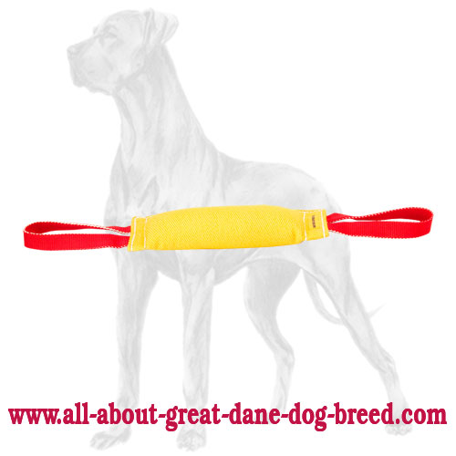 Great Dane bite tug with two handles