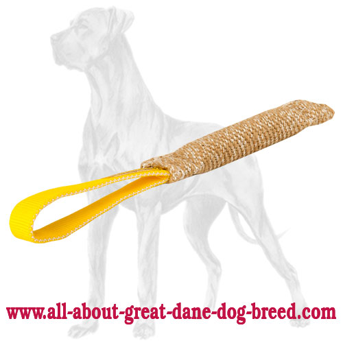 Jute Great Dane bite tug with comfortable handle