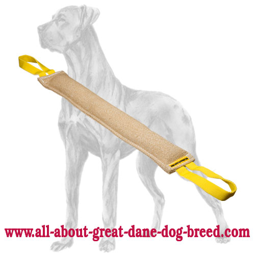 Hypoallergenic jute Great Dane bite tug