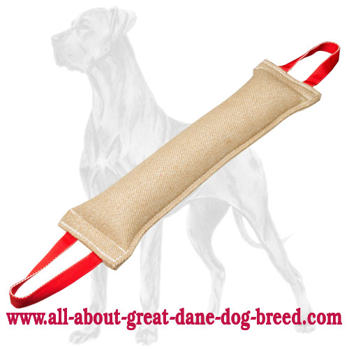 Bite tug for Great Dane with two handles