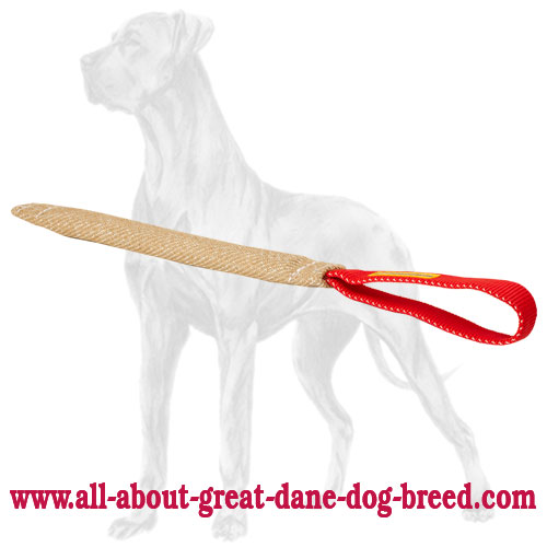 Pocket Great Dane bite tug with one handle