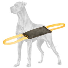 Professional training leather bite tug for Great Dane