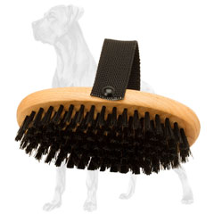 Great Dane brush for daily care