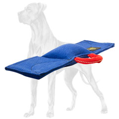 Professional guide pad with a handle for Great Dane