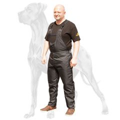 Training with Great Dane pants is safer
