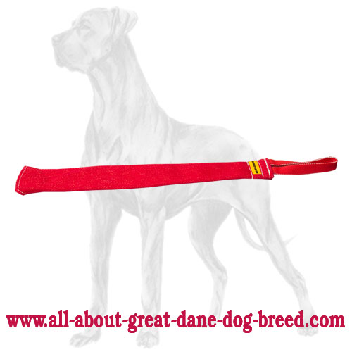 Sturdy Great Dane rag for prey drive skills improvement