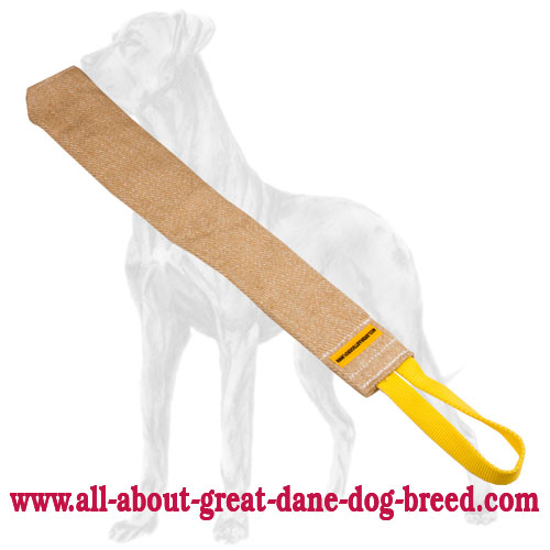 Totally safe Great Dane rag made of jute