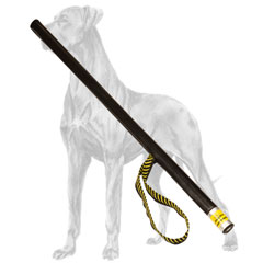 Noisy Great Dane stick for agitation and Schutzhund  training