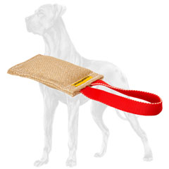 Easy-to-hold jute Great Dane tug with a handle