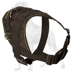 D-Rings on Nylon Dog Harness