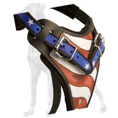 Non-Toxic Leather Dog Harness