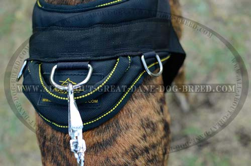 Premium quality nylon Great Dane harness