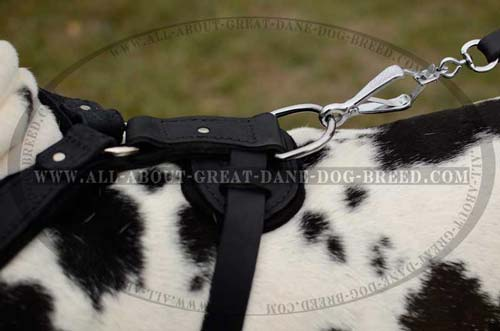 Leather Dog Harness Padded Back Plate