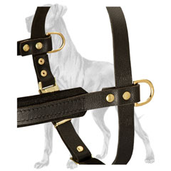 Strong Leather Great Dane Harness