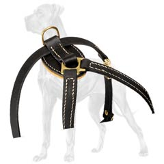 Fashion Leather Dog Harness for Great Dane Puppies