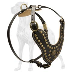 Amazing Leather Dog Harness