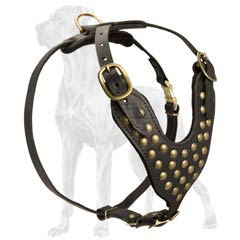 Studded Leather Canine Harness