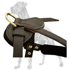 Unique Leather Great Dane Harness