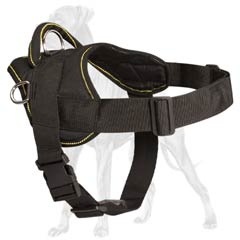 Convenient Great Dane harness with quick release  buckle