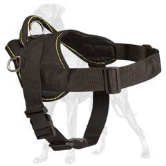 Great-Dane-Dog-Nylon-Harness-Stylish-Comfortable