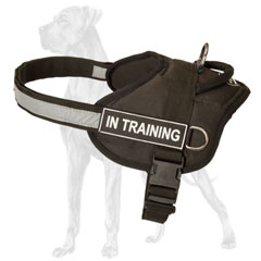 Lightweight Great Dane harness for tracking