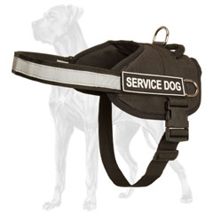 Great Dane harness for activity identification