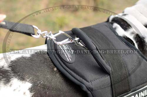 Exclusive Nylon Dog Harness