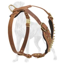 Decorated Leather Great Dane Harness with D-Ring to Attach Lead